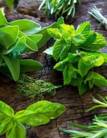 Herbs for Lupus
