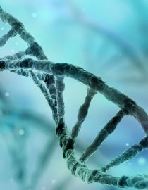 More Personalized Lupus Treatment Emerges